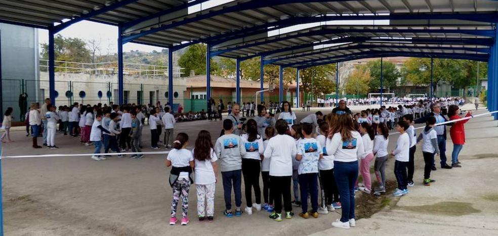 El colegio Campo Arañuelo afrontará dos obras en unos días