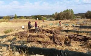 La lluvia que se anuncia modifica la jornada de puertas abiertas del yacimiento de Madinat Albalat