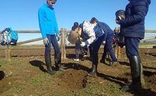 El proyecto de voluntariado ambiental de Inclusives en Villanueva implica a 1.418 personas
