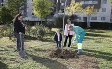 Elaboran un calendario con árboles notables de Losar para recaudar fondos benéficos