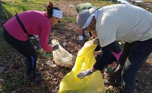 Voluntarios de Adenex recogen basura en la ribera del Guadiana en Mérida