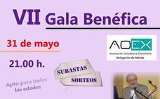 Gala benéfica a favor de la Princesa Ana en Mérida