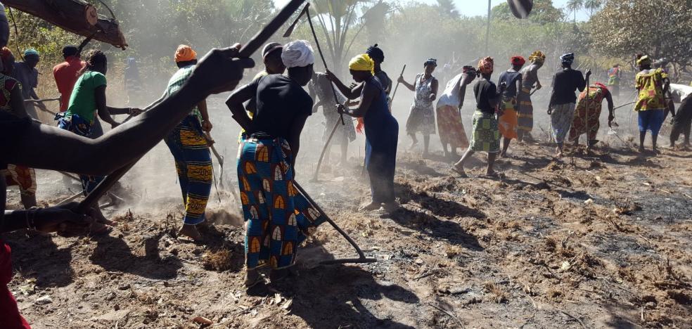 La oenegé cacereña Soguiba apoya a la mujer africana con educación y huertas ecológicas