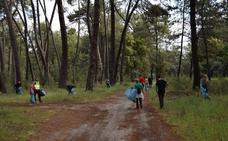 La Sociedad de Cazadores organiza una nueva jornada de limpieza del pinar