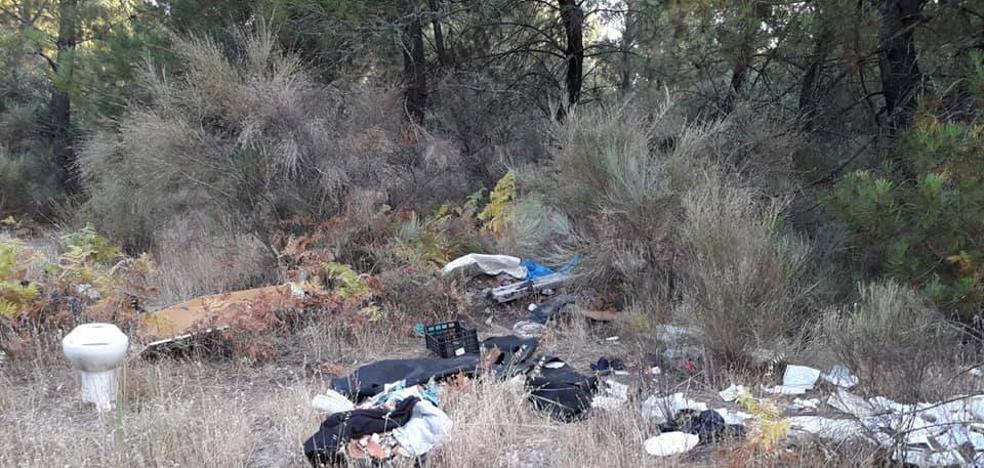 Nuevas denuncias por basura acumulada en el pinar