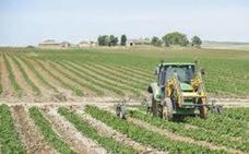 Los Agricultores extremeños han recibido ya 529 millones a cargo del Feaga del ejercicio 2019