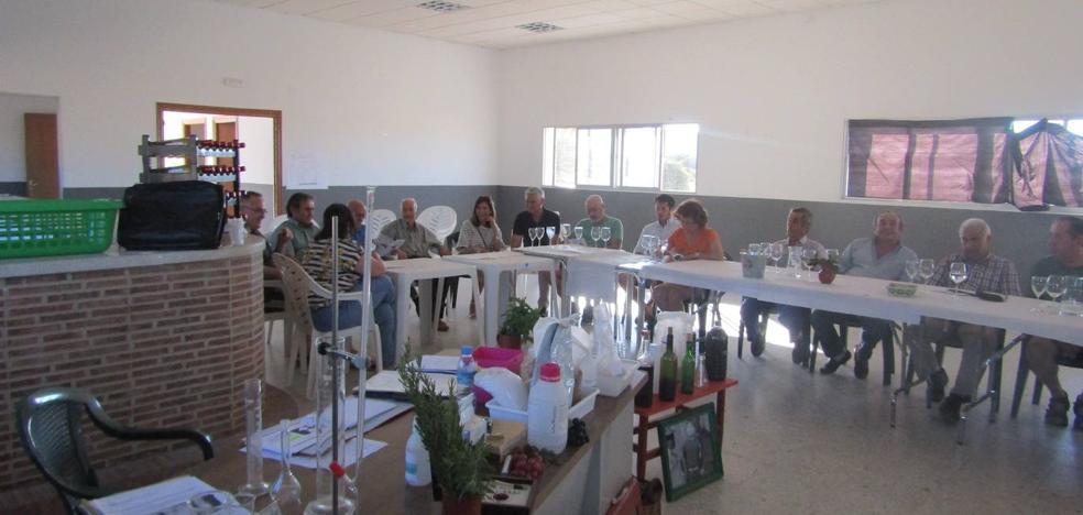 Adicomt lleva a cabo talleres sobre el vino como posible nicho de empleo