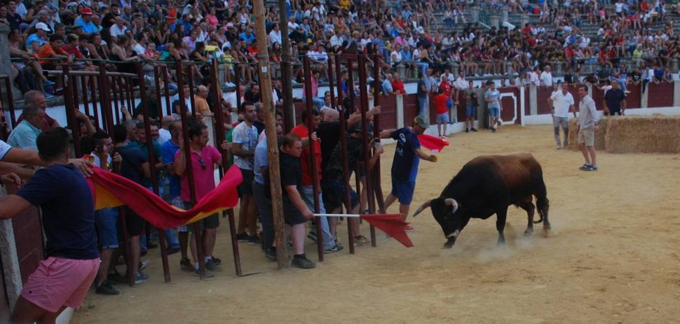 Los festejos taurinos de las fiestas patronales contarán con algunas novedades
