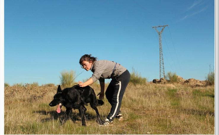 Amus inmerso en el proyecto para el rastreo de aves electrocutadas a través de perros