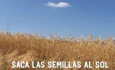 El sábado se inaugura la exposición 'Saca las semillas al sol' de María Jesús Manzanares
