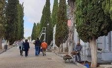 El servicio de autobús gratuito al cementerio se prestará del 28 de octubre al 1 de noviembre