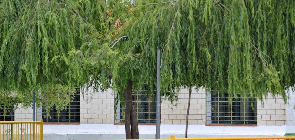Convocadas 16 plazas para cubrir el servicio público de la Piscina Municipal