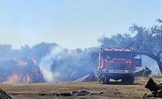 El Ayuntamiento informa de la entrada en vigor de la época de peligro bajo de incendios forestales