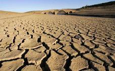 """Tejerina espera """"respuesta positiva"""" sobre el anticipo de ayudas por sequía"""