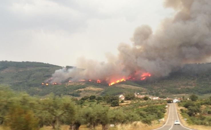 Incendio forestal en Villanueva de la Sierra