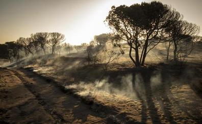 El incendio de Doñana queda controlado tres días después