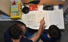 El Consejo Escolar propone deberes personalizados que respeten el ocio familiar