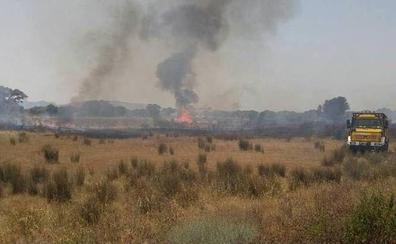 Estabilizado el incendio de Casas de Don Pedro, que mantiene el nivel 1 de peligrosidad