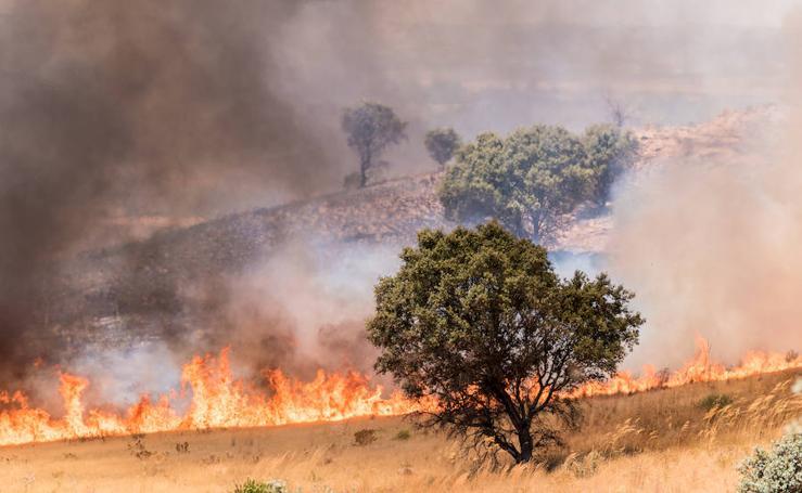 Un incendio entre Llera y Las Vaguadas calcina 1.000 hectáreas