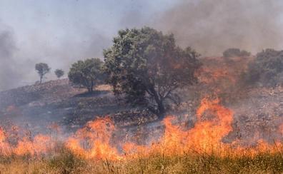Un incendio en la zona de caza entre Llera y Las Vaguadas calcina 1.000 hectáreas
