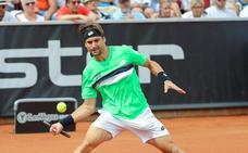 Ferrer vuelve a una final tras derrotar a Verdasco