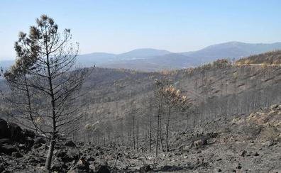 Reclama 96.000 euros por la pérdida de su casa en el incendio de Gata de 2015