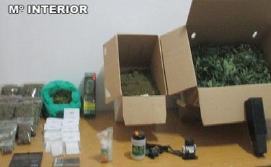 Detenido un vecino de Casas de Castañar con 600 bolsas de marihuana para su venta