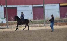 Casi treinta jinetes participan en el campeonato de doma vaquera de Almendralejo