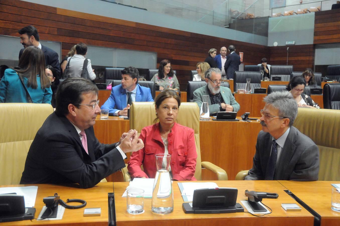 Sesión plenaria en la Asamblea de Extremadura