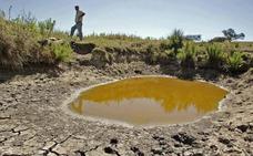 Ayudas a ganaderos para paliar la sequía con pozos y charcas