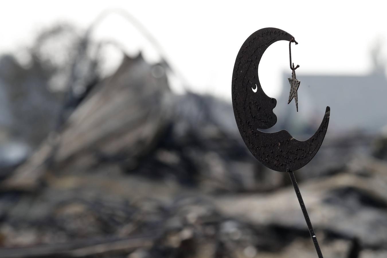 Los incendios en California dejan 17 muertos y más de 46.500 hectáreas arrasadas