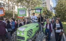 Tractorada de los cooperativistas de Caval por la situación del exgerente