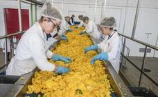 25.000 toneladas de verduras congeladas viajan de Extremadura al resto del mundo