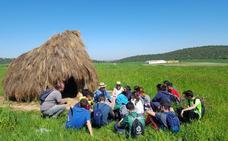 El IES Campos de San Roque, Premio García Verdejo por el proyecto 'Raíces'
