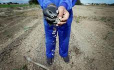 La Unión pide que la partida destinada a las opas sea para paliar la sequía