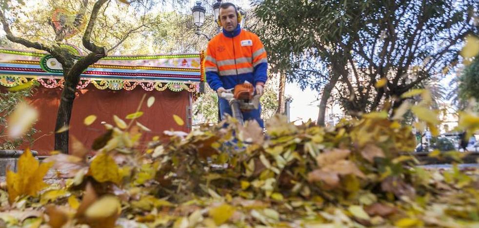 Cáceres trabaja en la retirada de un millón de kilos de hojas
