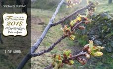 La floración de los cerezos del Valle del Jerte comenzará a mediados de esta semana