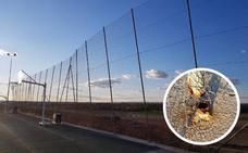 Alertan del peligro de derrumbe de la valla de la pista deportiva del Cerro Gordo en Badajoz
