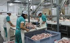 Nueve municipios se ofrecen para acoger el gran matadero de ibérico de Extremadura