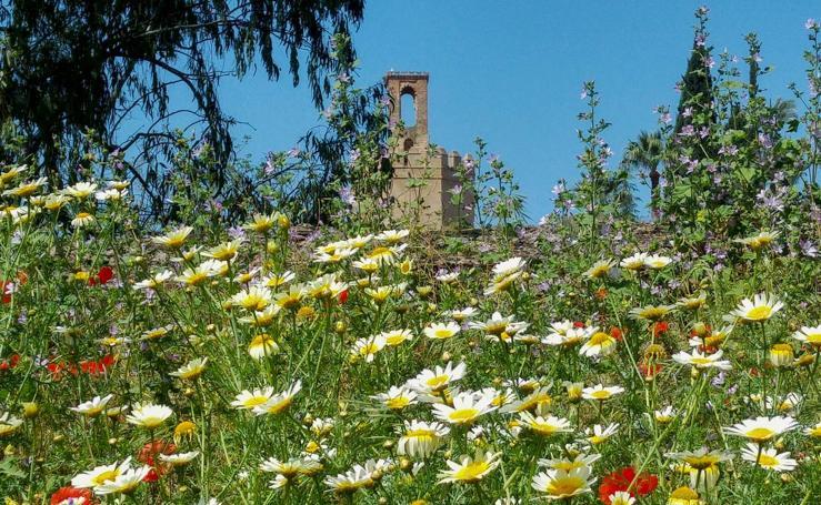 La primavera en Extremadura
