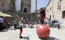 Un pasacalles cierra este domingo el Festival de las Aves de Cáceres