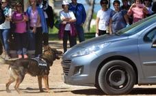 Más de 20 policías locales con perros harán prácticas en Badajoz durante Los Palomos