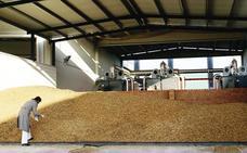 Las dudas sobre su legalidad paralizan las ayudas a la fabricación de biomasa