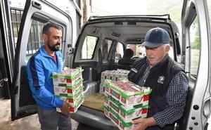 Reunión de urgencia por la crisis de precios de la cereza extremeña