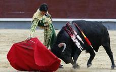 Muere a los 27 años el torero mexicano Mario Aguilar