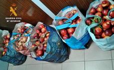 Dos vecinos de Badajoz sorprendidos con 100 kilos de fruta robada en Valdelacalzada
