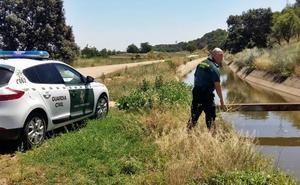 La Guardia Civil y dos vecinos de Lobón rescatan a una mujer que cayó a un canal en Guadajira