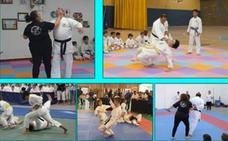 Gala solidaria de artes marciales a favor de Emeritea
