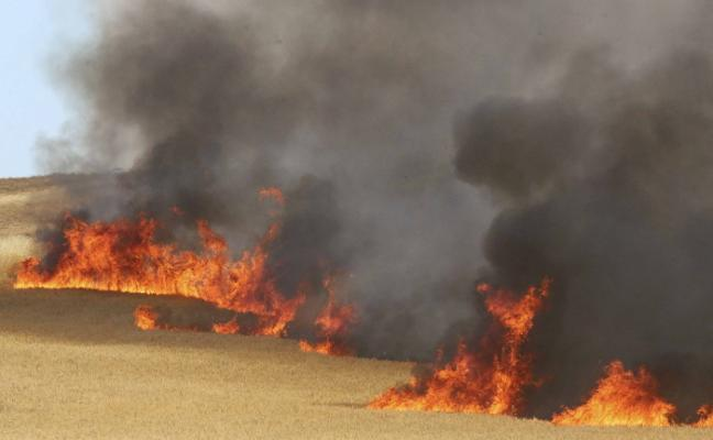 Incendio de pastos entre San Juan y Montealto