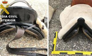 Detenido un menor por robar sillas de montar y accesorios en una vivienda de Casillas de Coria